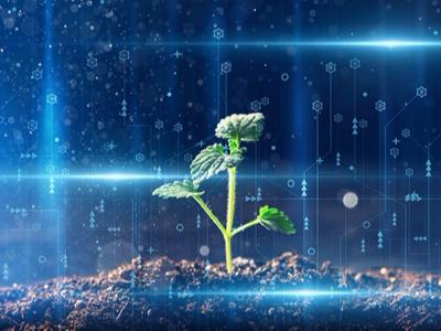 创新型企业体系建设